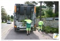 Les déchets verts